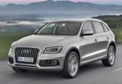 AUDI Q5 2.0 TFSI 225 Quattro Ambition Luxe avec options